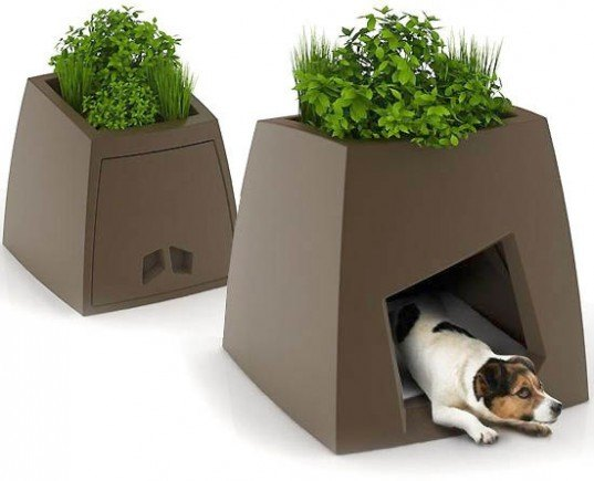Kokon Modern Pet House, pet house, dog house, cat house, bird house, birdhouse planters, green do house, green pet house, green roof pet house, pet house planters, dog house planters, modern pet house
