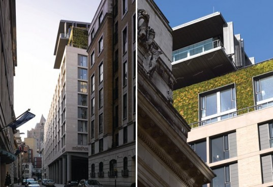mint hotel tower of london, bennetts associates, london, boutique hotel, eco hotel, mint hotel, living wall, green hotel