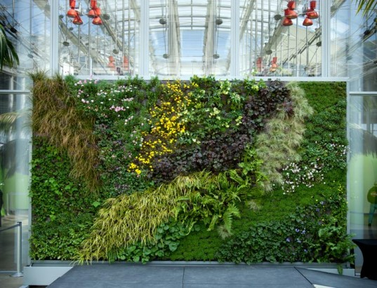 News archive november 2011 design 4 sustainability for The living room channel 10 vertical garden