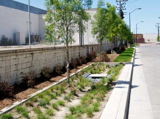 American society of landscape architects highlights 479 for Society of landscape architects