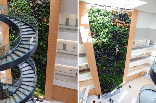 largest biowall in the united states, parker urban greenscapes, green design, sustainable design, green wall, vertical garden, bio wall, green building, drexel university, papadakis integrated sciences building, drexel biowall