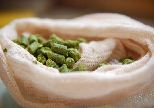 A Simple Guide to Beer Brewing for Seasonal Ale Lovers