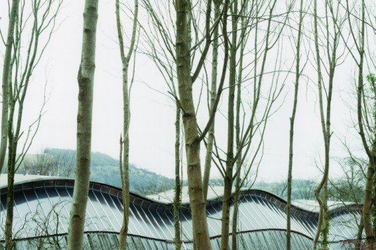 Sustainable Materials,Landscape Architecture,Green Materials,energy efficiency,biomimicry,Architecture,oak wood,gridshell,sussex,england,museum,gravity,wooden structure,