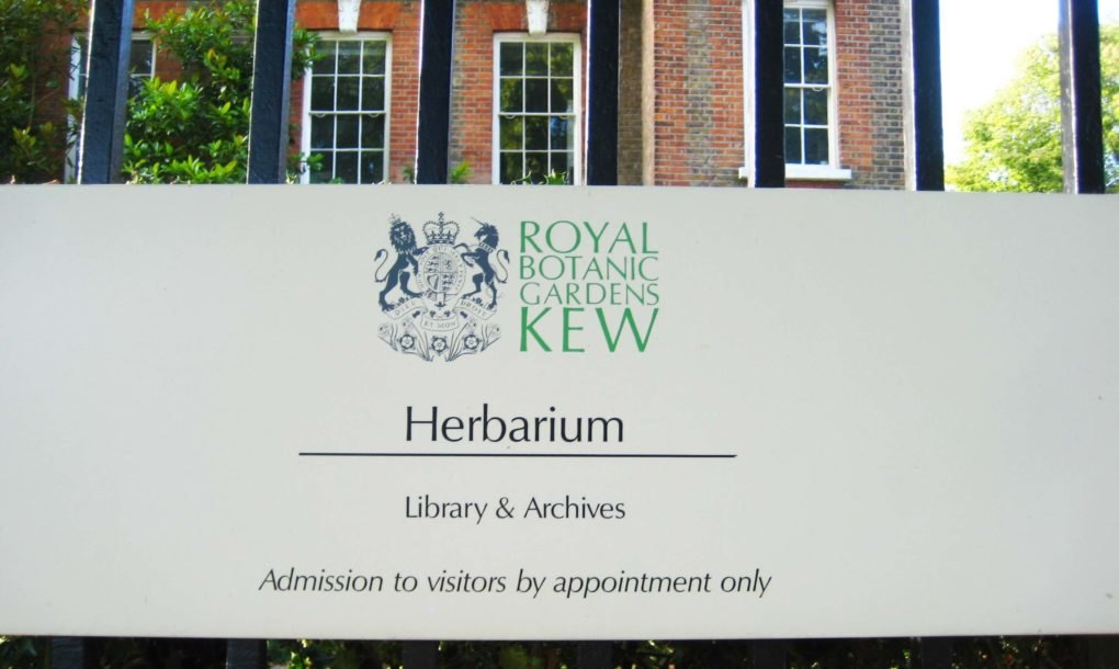 Kew gardens 39 new herbarium building in london is breeam for New and innovative heating and cooling system design