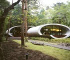 Organic Japanese Shell Residence Wraps Around a Centenarian Fir Tree