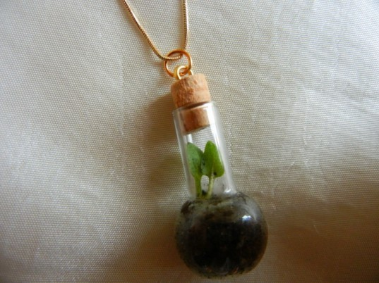 DIY Eco-Fashion, DIY fashion, diy gift, diy idea, diy jewelry, diy necklace, glass bottle necklace, how to make a terrarium, How to Make a Terrarium Necklace, living necklace, plant necklace, terrarium, terrarium necklace