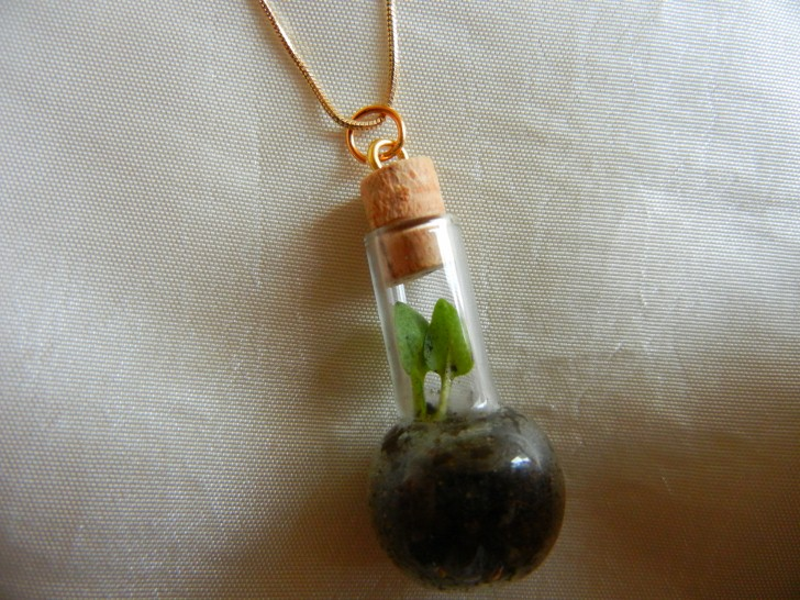 Diy how to make a cute terrarium necklace to keep or give as a gift design solutioingenieria Image collections