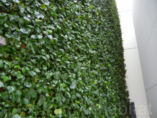 osaka, japan, japanese green building, green design, eco design, sustainable design, green wall, vertical garden, ivy wrapped building, green architecture, ivy wrapped bike parking lot, green bike parking garage, greenery wrapped building, ivy wrapped building