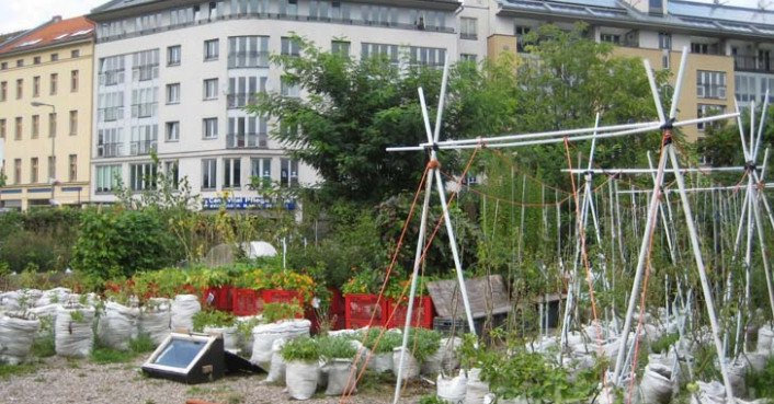 mobile urban agriculture blooms in berlin 39 s