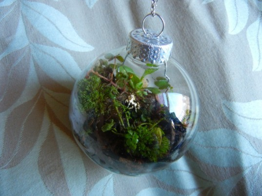 terrarium, terrariums, terrarium christmas ornament, terrarium holiday ornament, diy terrarium ornament, diy ornaments, diy christmas ornaments, holiday ornament how to