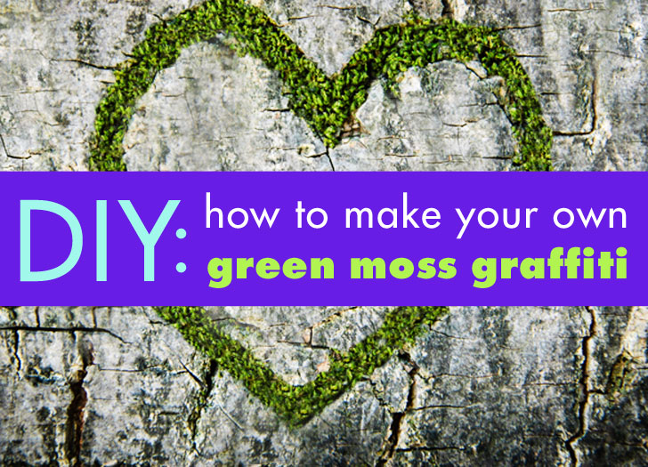Diy How To Make Your Own Green Moss Graffiti