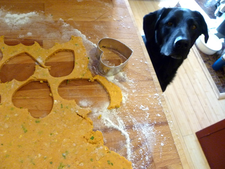 how to make peanut butter cookies for dogs