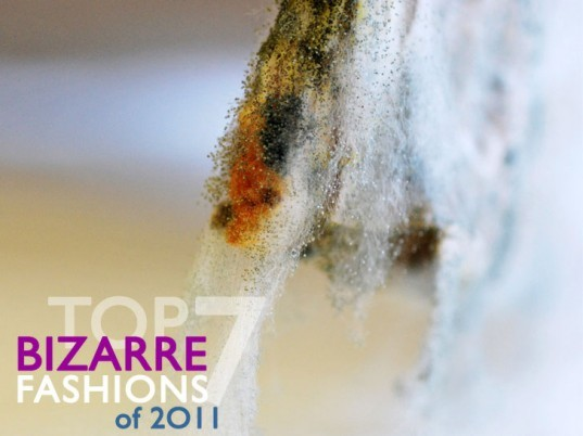 Best of 2011, bizarre eco-fashion, eco-fashion, ethical fashion, green fashion, Sustainable Fashion, sustainable style