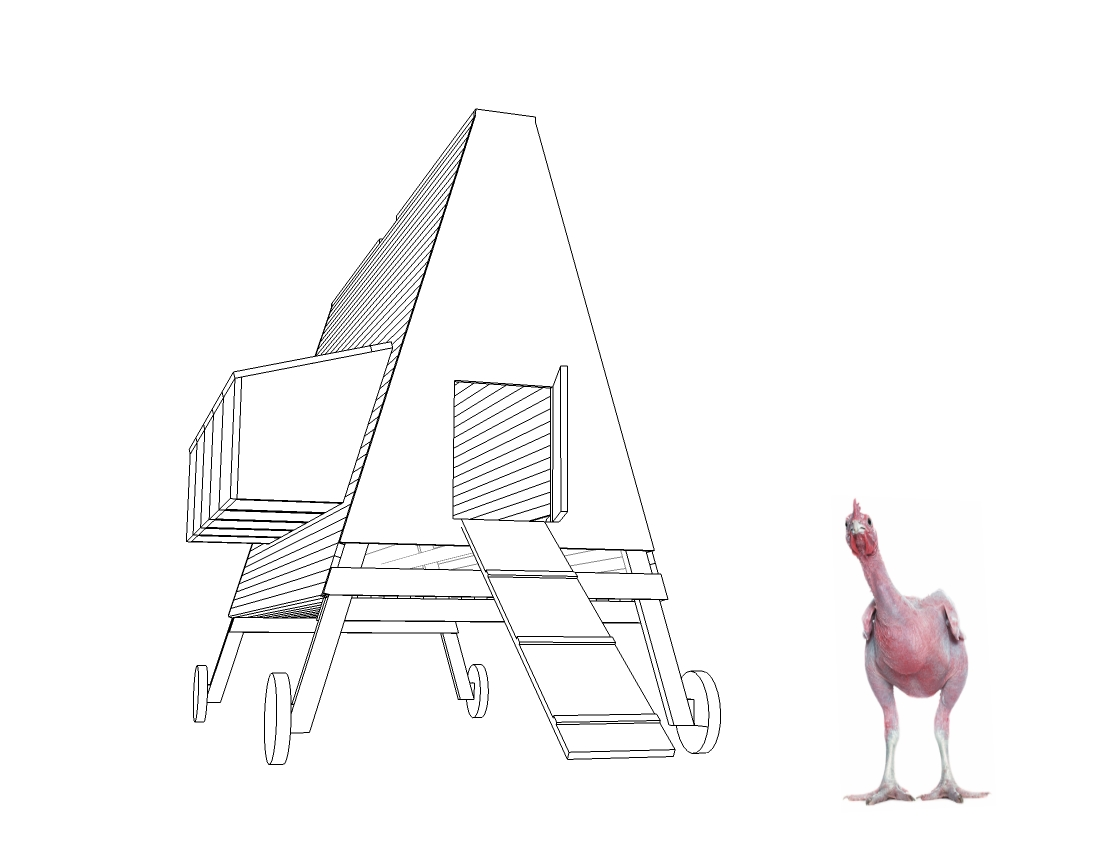 community architecture lab helps kids build chicken coops