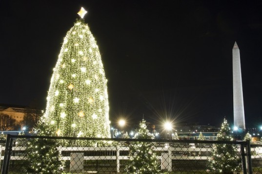 White House, National Christmas Tree, D.C., LED lights, GE, National Park Service, holiday, green holidays, energy efficient lighting, holiday traditions, green technology, green lighting, President Park, green design, sustainable design, eco design