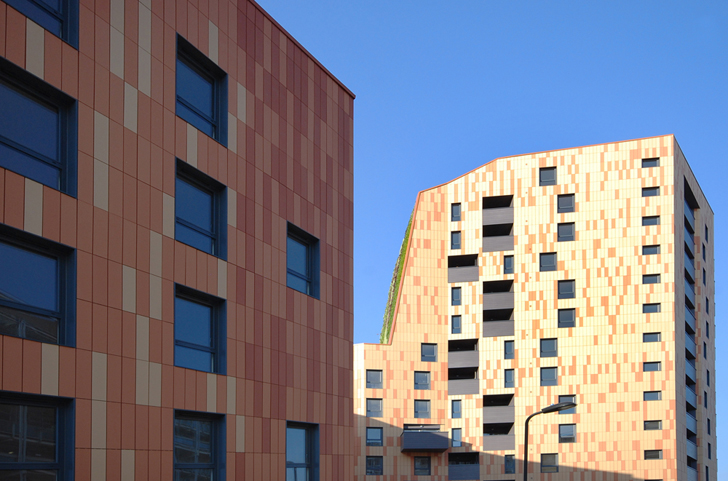 green design, eco design, sustainable design, Europe's tallest living wall, plant wall, affordable housing, Davy Smith Architects, Digby Road, London, Biomass power, biomass boiler, 2012 Olympics