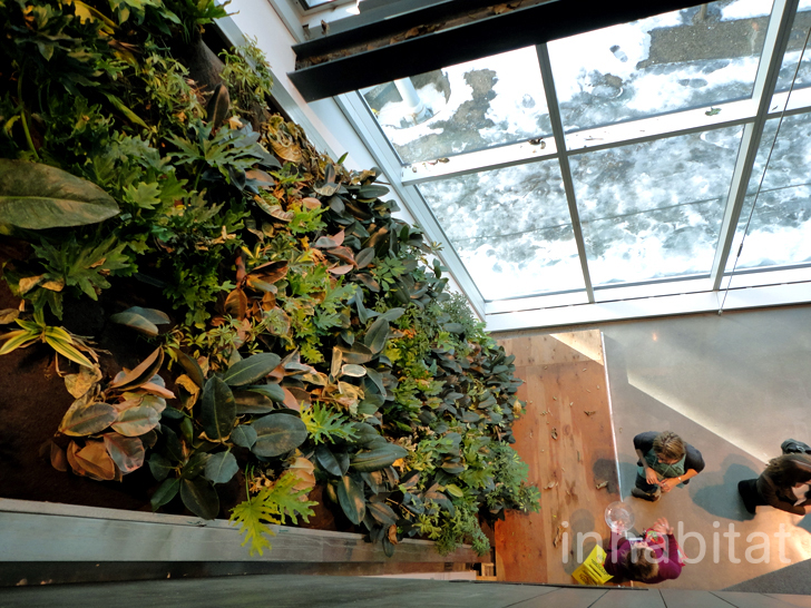 Pics the montreal center for sustainable development boasts a lush vertical garden and green - Maison du developpement durable ...