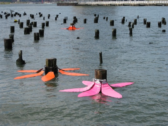stacy levy, tide flowers, sea level rise, ecological art, hudson river valley, commission