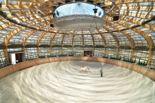 Stork Nest Farm, SGL Projekt, stork nest, riding arena, farm renovation, stork nest riding arena