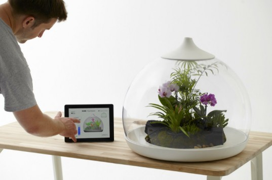 green design, eco design, sustainable design, terrariums, indoor garden, Paula Hayes, MoMA, Marianne Boesky, Jose Agatep, Slug and Squirrel, DIY terrarium, Biome terrarium, Sam Wilkinson, TERRA terrarium, Fort Standard, Kristyna Pojerova, Glasshouse terrarium, DIY Terrarium necklace