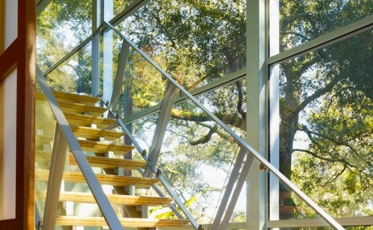Woodlands Residence, Field Architecture, Ubuntu Center, South Africa, California, redwood trees, oak trees, green design, sustainable design, eco design, bamboo, natural light, bamboo, recycled glass