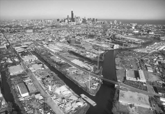 Reverse Effect, Jeanne Gang, Studio Gang Architects, Chicago, Chicago River, NRDC, Natural Resources Defense Council, Henry Henderson, Bridgeport, South Side, Asian Carp, Great Lakes, clean water, water pollution,