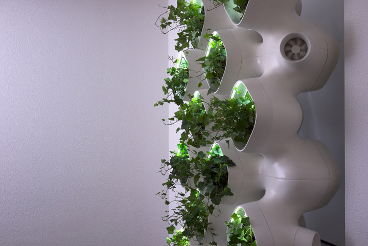 Case and som 39 s amps living green wall promises to for Green wall system