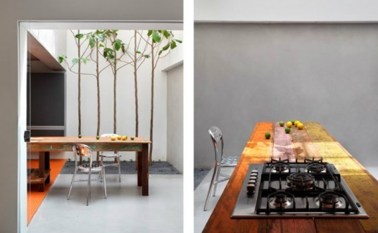 Guilherme Torres Studio, Guilherme Torres, Victor Brecheret, brazil, green renovation, green remodel