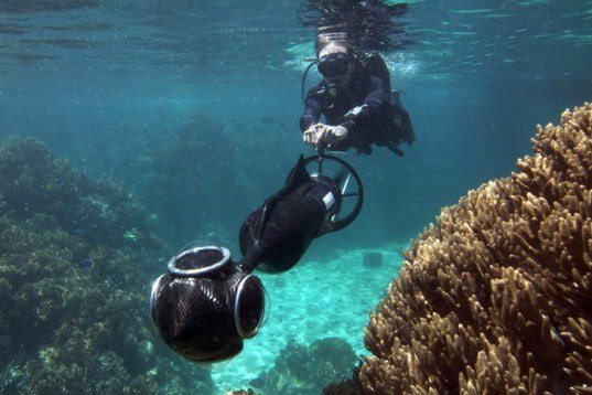 Animals, Botanical, Eco Travel, Faux Nature, global warming, Robotics, Google Street View, Google, University of Queensland, the Caitlin Group, Gizmodo, The Catlin Seaview Survey, Great Barrier Reef, Australia, Diver Propulsion Vehicles, underwater film, underwater photograph