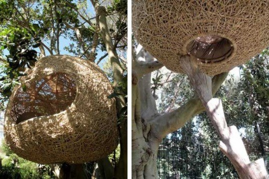 Treehouses, biomimicry, Botanical, green furniture, Green Materials, Recycling / Compost, Animal Farm, human nest, nest, hanging nest, bark, branches, Porky Hefer, biodegradable pod, retreat pod
