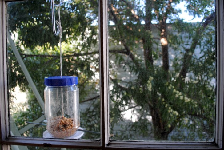 How To Make A Recycled Birdfeeder