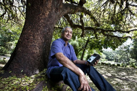 Queensland University of Technology trees could produce electricity, ions in the air, trees producing electricity, Queensland University of Technology, Queensland University of Technology, Dr Rohan Jayaratne, radon in the air, radon ions electricity