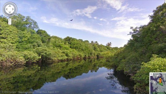 Google Street View, Amazon Street View, Amazon Rainforest, Rio Negro Reserve, Amazon River, Amazon Photography
