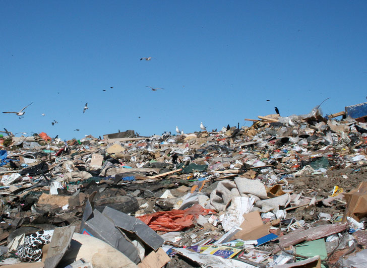 Mayor Bloomberg Calls for RFP on Solid Waste to Energy Facility