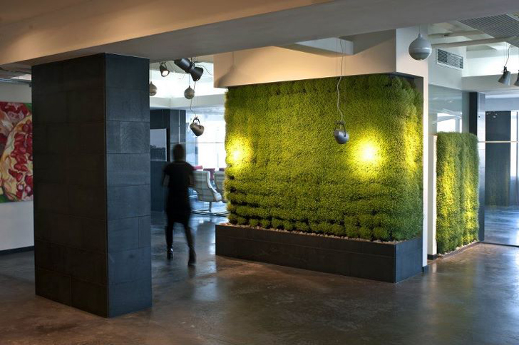Tseh Architects Transform A Dull Office Into A Glorious Green Haven