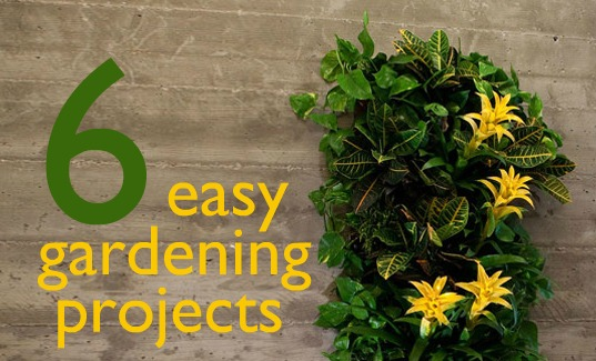 Easy gardening projects fire escape garden inhabitat for Simple garden design