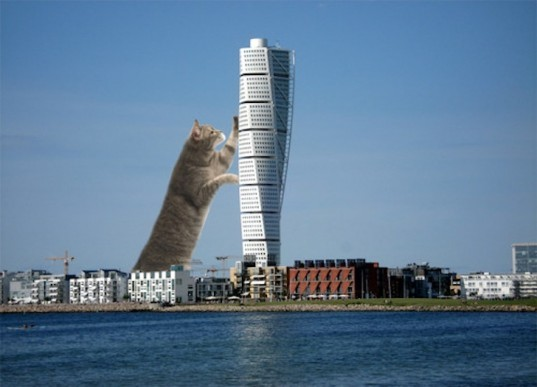 UC Berkeley, LOLcats, photoshop, green design, architecture, sustainable design, eco design, Archinect, art, La Sagrada Familia, Leaning Tower of Pisa