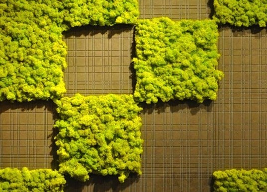 Anna Garforth, Edina Tokodi, Mosstika, Makoto Azuma, DIY, moss, green graffiti, moss graffiti, MOSS tiles, reverse graffiti, strook, green design, art, sustainable design, eco-design