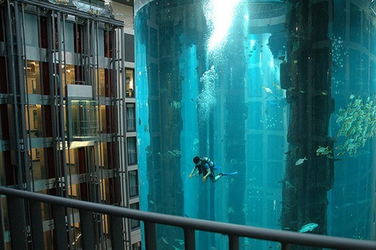 Aquadom at the Radisson Blu Hotel in Berlin, Aquadom, Radisson Blu Hotel, Hotel Aquarium, Berlin Aquarium, Amazing Hotels, Giant Aquariums, germany aquariums