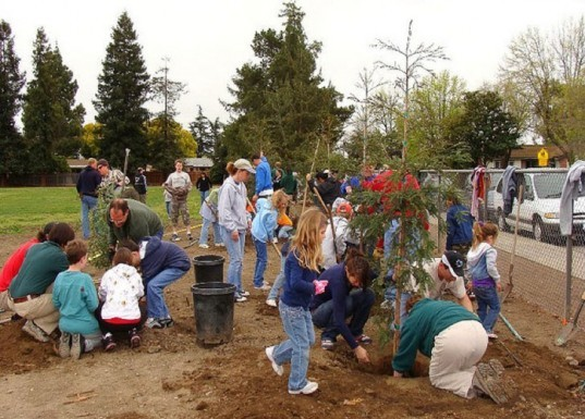 Earth Day, planting