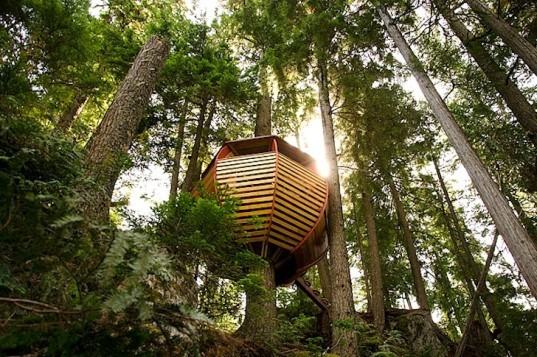 Egg-Shaped HemLoft Treehouse is Nestled in the Forests of Whistler