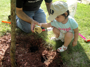 jasmin Malik chua, earth day, planting tree, tree, gardening, growing, planting seeds