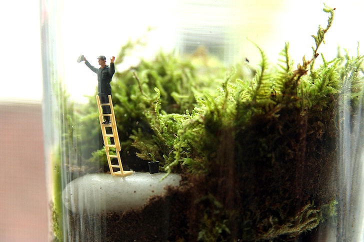 Tiny World Terrariums is a Step-by-Step Guide to Making Your Own Miniature Green Gardens