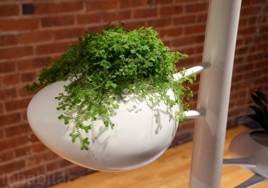 live screen, danielle trofe, wanted design, new york design week, indoor plants, hydroponics, vertical garden