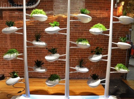 live screen showcased at icff is a self watering wall for growing indoor plants inhabitat. Black Bedroom Furniture Sets. Home Design Ideas