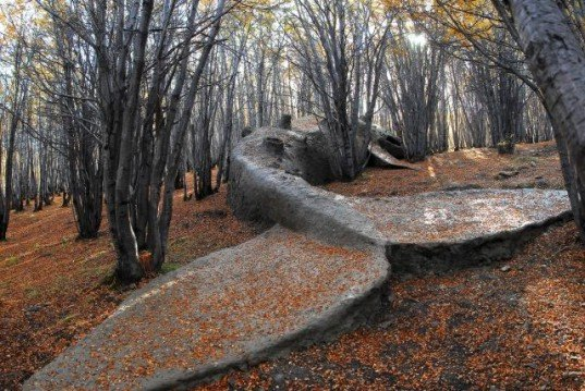 Adrian villar rojas, argentina, my family dead, whales, sculpture, Ushuaia, clay, mixed media sculptures, patagonian forest