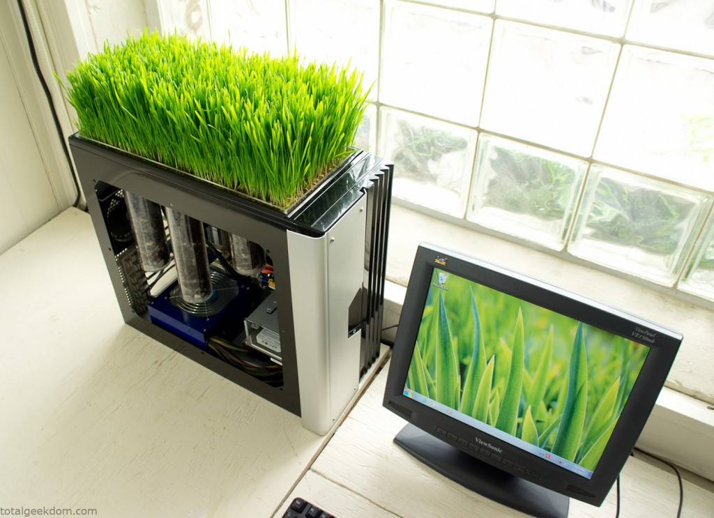 green computing, bio computer, computer plants, mike schropp, total geekdom, green computer plant, computer wheatgrass