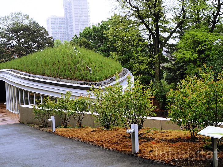 ... Brooklyn Botanic Gardenu0027s New Green Roofed Visitor Center. Architecture