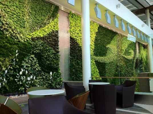 EIA Living Wall, Green over Grey, Edmonton Airport, living wall, vertical garden, indoor air quality, canada
