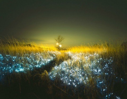 Lee Eunyeol, starry night, landscape photography, light installations, green art, landscape art, environmental photography